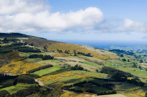 A Variety of Experiences in New Zealand - 15 Apr 12