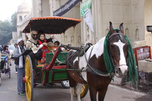 Einkaufserlebnis in Lucknow - 24 Dez 13