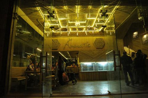 Ammaji's Ayurvedisches Restaurant ist offen – Essen wie von den Händen deiner Mutter! – 6 Mär 16