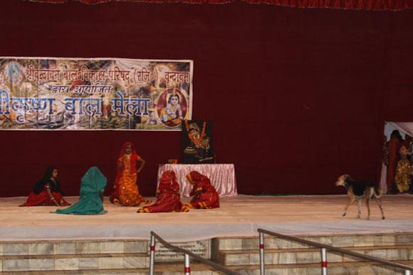 Indisches Chaos bei Tanz-Fest - 15 Nov 09