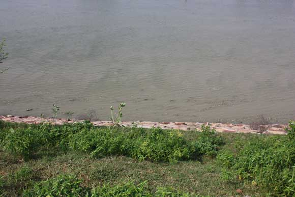 Polluted Water of the Yamuna in Vrindavan not Treatable anymore - 5 Feb 11