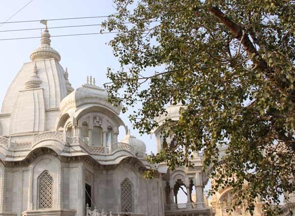 ISKCON und Vergewaltigungen, Morde, Kindesmissbrauch und Prositution in Vrindavan – 25 Feb 11