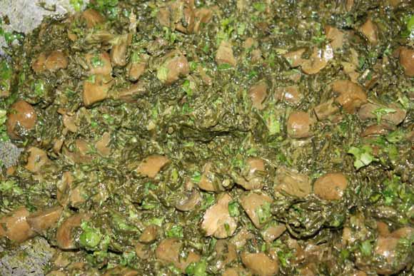 Palak Mushrooms - Easy Ayurvedic Recipe for Indian Spinach with Mushrooms - 26 Feb 11