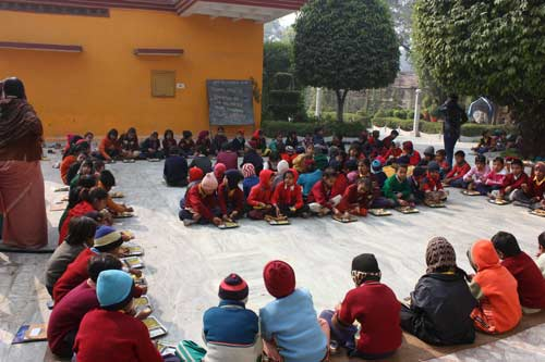 Comparing our small and personal Charity Organization to bigger ones - 19 Dec 11